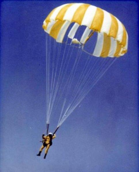 canopy1964.jpg